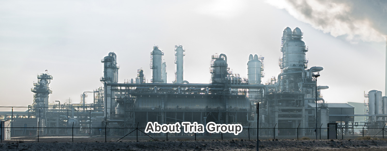 About TRIA Group